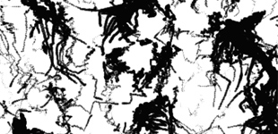 Dark Spot Sketch
