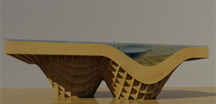 Parametric Coffee Table Design